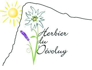 Photo de l'entreprise : Herbier du Dévoluy