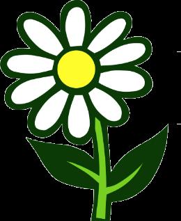 Photo de l'entreprise : Horticulture Chouvet